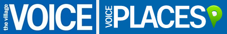 Voice Logo gray